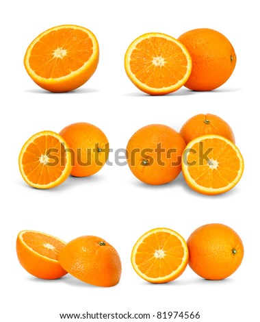 collection of oranges - stock photo