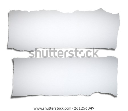 Collection of paper tears, isolated on white with soft shadows - stock photo