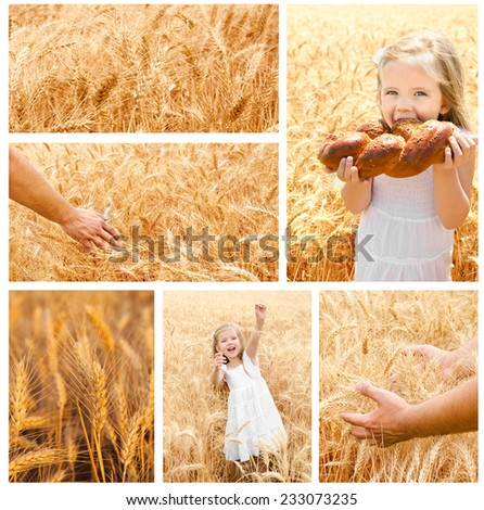 Collection of photos wheat field and little girl with bun outdoor - stock photo