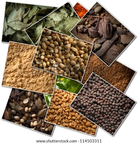 Collection of pictures of different spices - stock photo