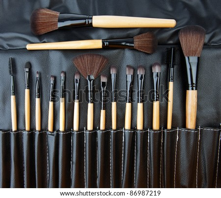 collection of professional make up brushes in leather set - stock photo