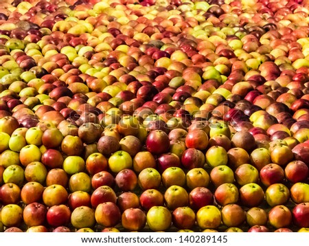 Collection of red and yellow apples for sale.
