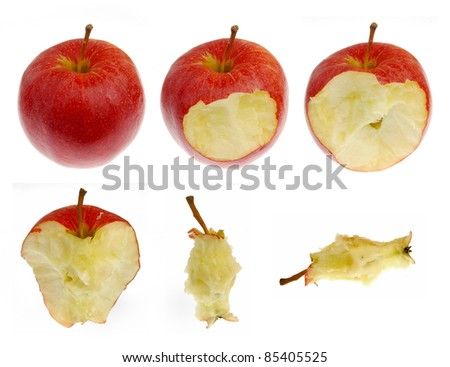 Collection of red apple in different consummation stages, Isolated on White Background - stock photo