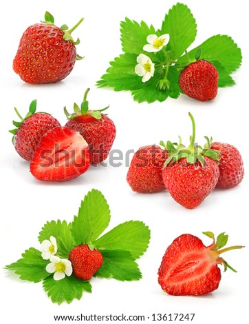 collection of red strawberry fruits isolated on white background - stock photo