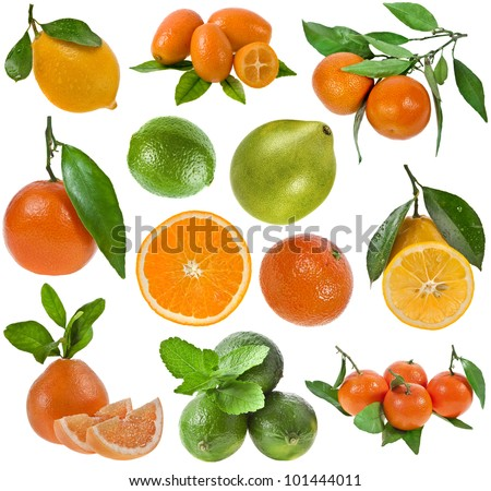 collection of ripe citrus fruits  isolated on the white background