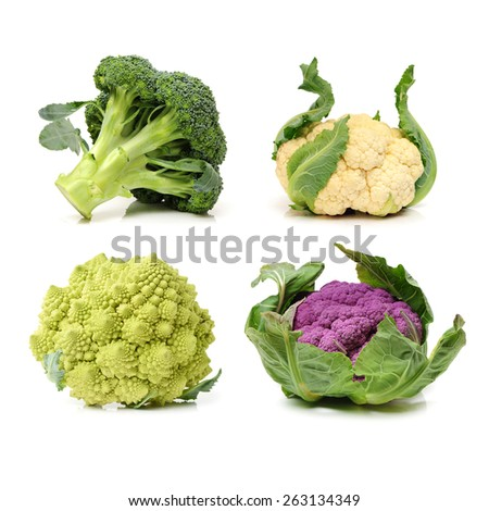 Collection of Romanesco broccoli and cauliflower isolated on white background - stock photo
