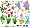 Collection of spring flowers. Raster version - stock photo