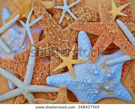 Collection of starfish transformed into a colorful painting