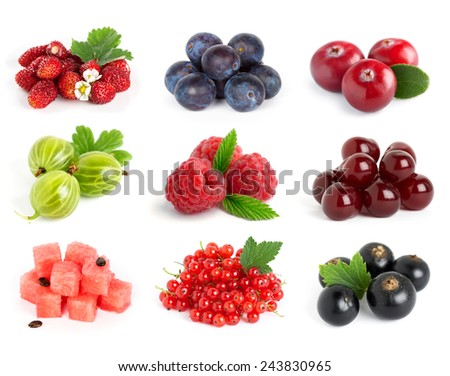Collection of sweet berries on white background