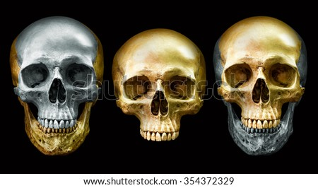 Collection of the golden and metal human skull isolated on black background - stock photo