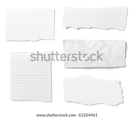 collection of  various ripped pieces of paper on white background. each one is shot separately