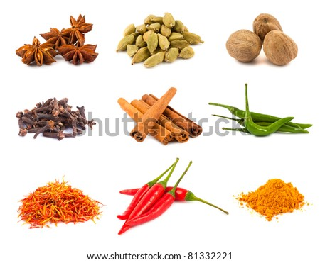 Collection of various spices isolated on white background - stock photo
