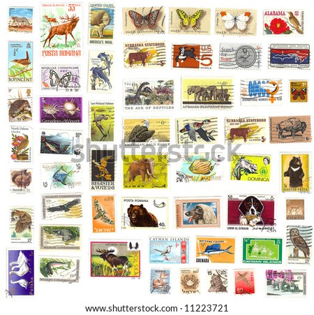 collection of vintage animal stamps - stock photo