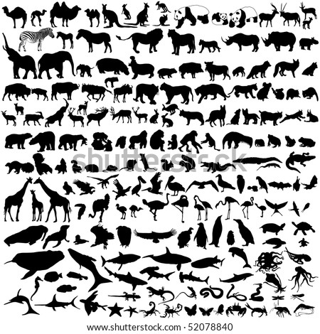 collection of wild animal silhouettes - stock photo