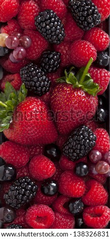 Collection of wild berries and strawberry - stock photo
