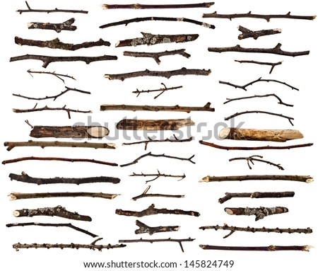 Collection set of dry wood branches isolated on a white background  - stock photo
