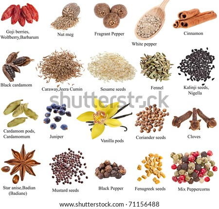 Collection set of heap spices with names close up isolated on white background