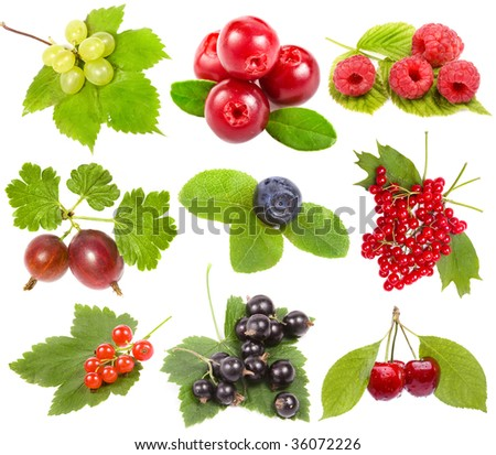 collection set of ripe berries, isolated on a white background - stock photo