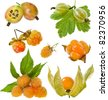 Collection set of sweet yellow  berries : gooseberry, cloudberry, raspberry,physalis   isolated on white background - stock photo
