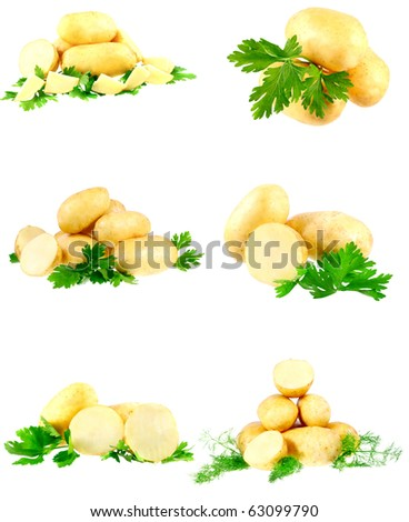 Collection(set) of young potatoes, decorating of parsley . Isolated over white