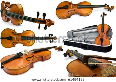 collection violin isolated on a white background - stock photo