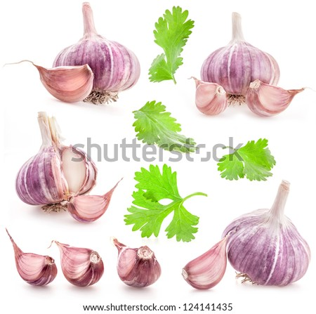 Collections of garlic and green leaves isolated on white background - stock photo