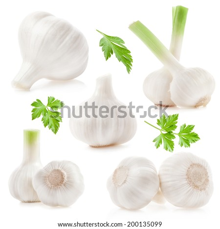 Collections of Garlic isolated on white background - stock photo