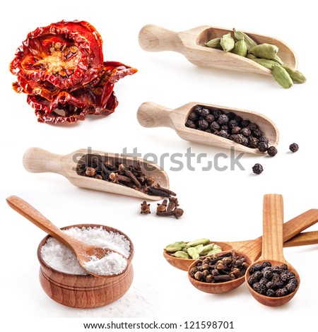 Collections of spice isolated on white background - stock photo
