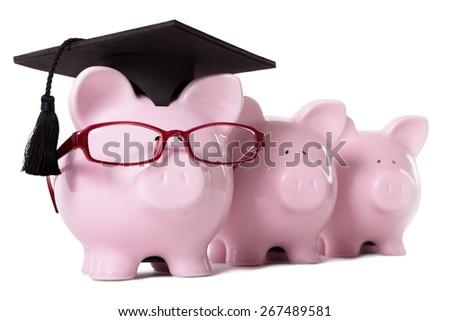 College graduate, piggy bank, row, isolated - stock photo