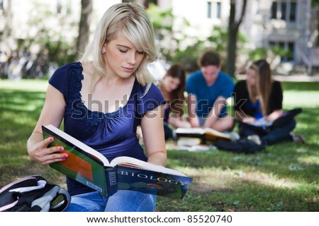 College students studying at campus lawn - stock photo