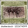 COLOMBIA - CIRCA 1956: S stamp printed in Colombia honoring Regional Industries, Prize cattle, Cordoba , shows bulls, circa 1956 - stock photo