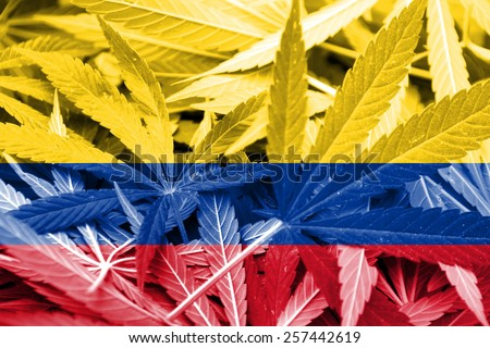 Colombia Flag on cannabis background. Drug policy. Legalization of marijuana - stock photo