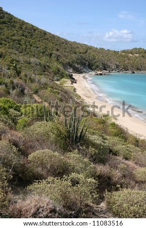 colombier bay in St Barth, Caribbean - stock photo