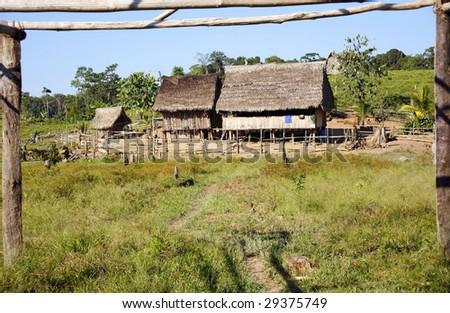 Colonist farm in former rainforest in the Peruvian Amazon - stock photo