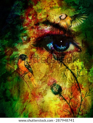 Color abstract background with birds and flower and  blue eye. Eye contact