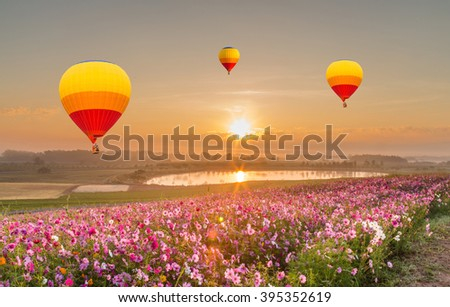 color balloon over Cosmos flowers with blue sky - stock photo