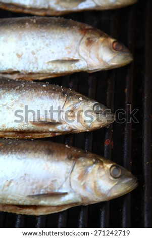 Color detail shot of some fish on a grill.