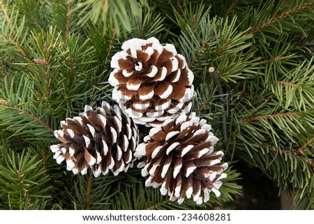 Color DSLR picture of three (3) pine cones in a festive Christmas holiday wreath.  The decoration is in horizontal orientation and is good for background. - stock photo