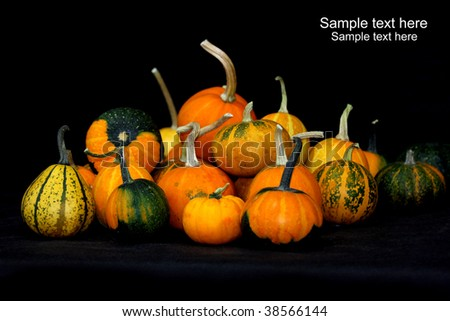 color-full little pumpkins - stock photo