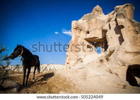 Color image of some caves and a horse in Cappadocia, Turkey.