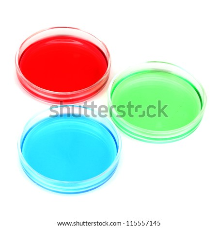 color liquid in petri dishes isolated on white - stock photo
