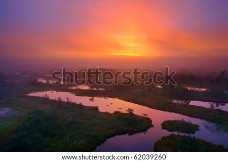 Color morning on the swamp very mystical landscape at sunrise. - stock photo