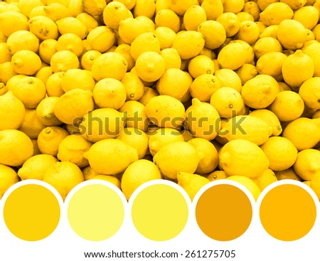 Color Palette Of Yellow Lemon Fruits In Market