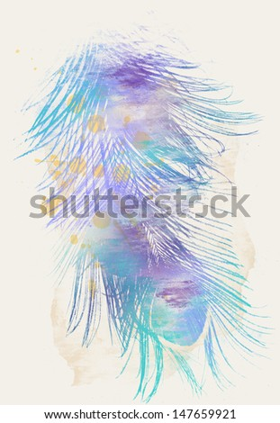Color Peacock Feathers - stock photo