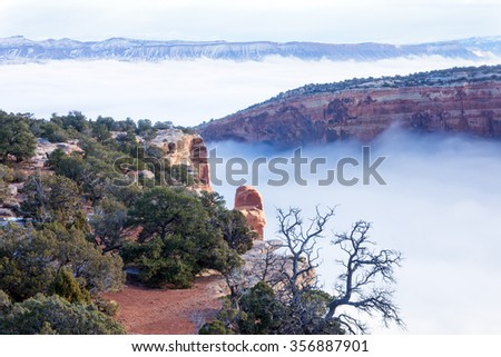 Colorado National Monument. Plateau in the snow, canyon in fog - stock photo