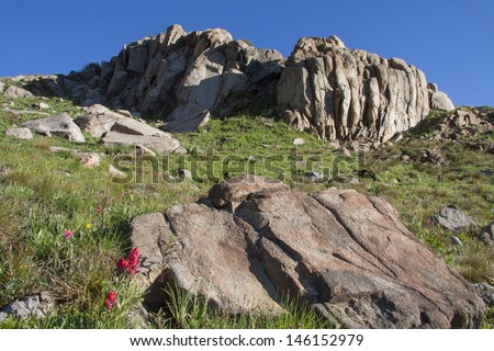 Colorado summer - blooming wildflowers, including red Indian paintbrush, in front of rock formations along the Second Creek trail, near Winter Park. - stock photo