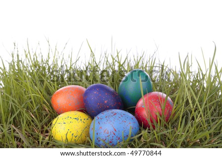 Colored easter  eggs on grass over white background