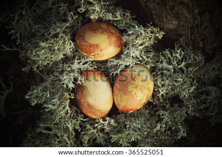 Colored Easter eggs on the moss. Vintage toning. - stock photo