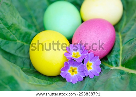 Colored easter eggs with violet flowers - stock photo