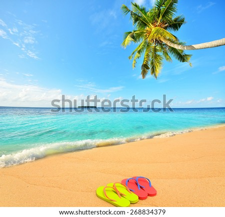 Colored flip flops at tropical golden sand beach -- Tropical beach vacation and travel concept    - stock photo